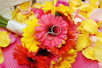 Weddings Photography 13