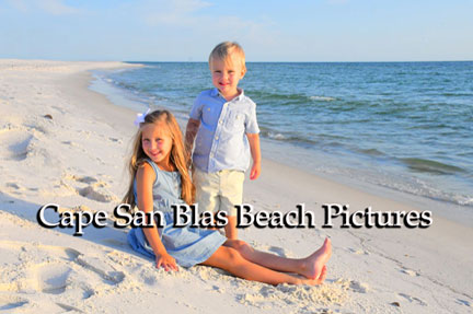 Gallery of Cape San Blas Portraits