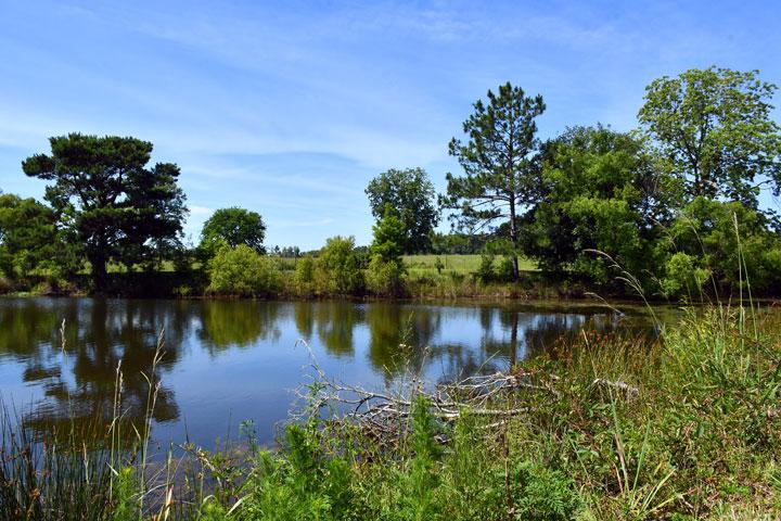 Greensboro Florida Campground