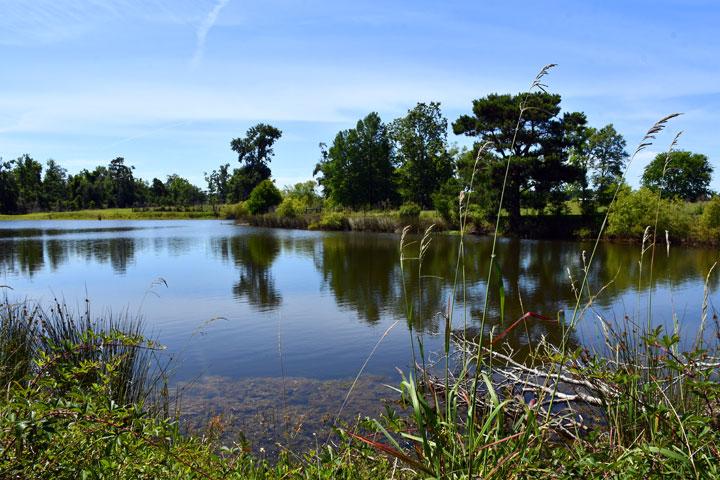 Greensboro Florida Campgrounds